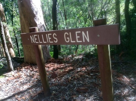 Run-21-Nellies-Glen.jpg