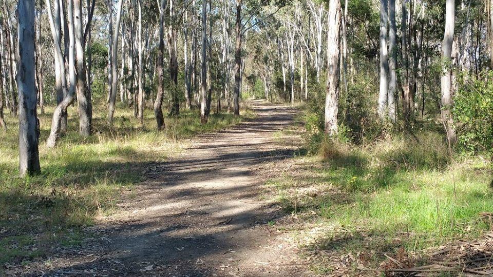 Run-29-Mulgoa-Nature-reserve.jpg